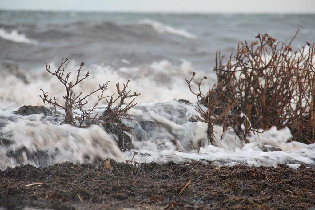 natural storm surge landscape