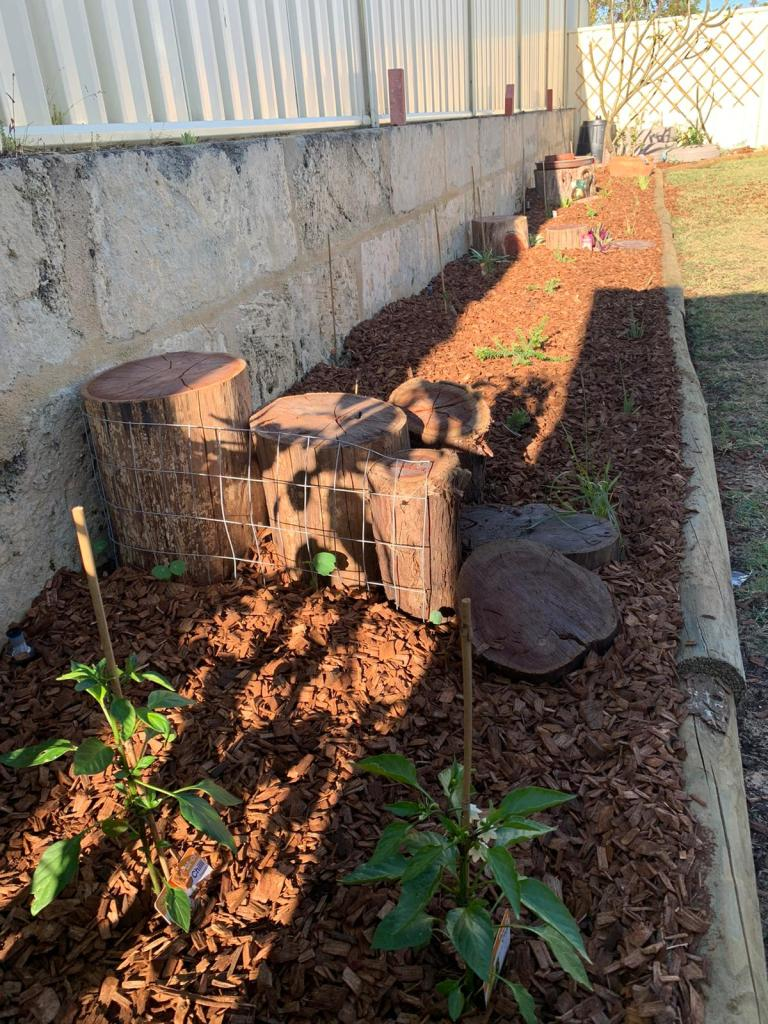 Jarrah logs, chillies, mulch and plants
