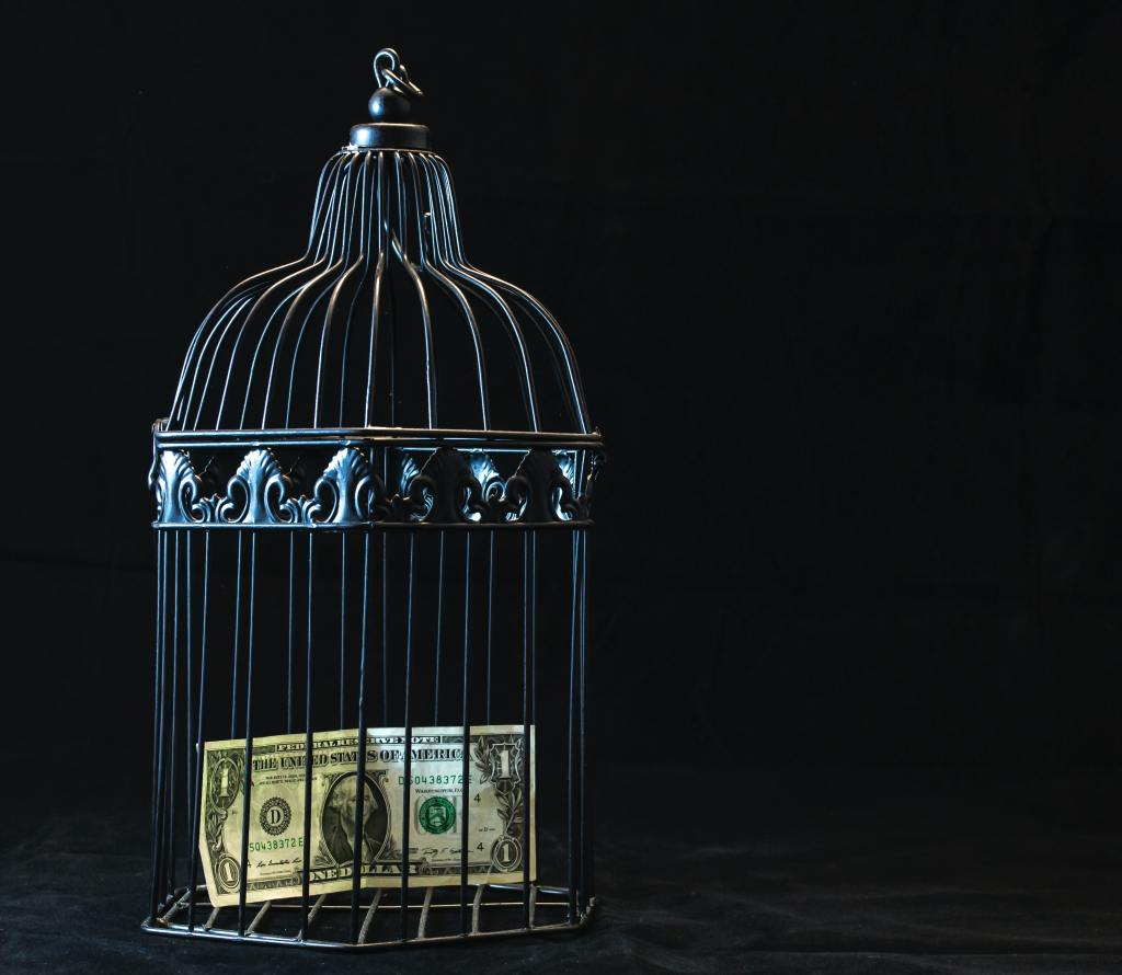 Ornate, steel bird cage on black background. US$1 note inside.