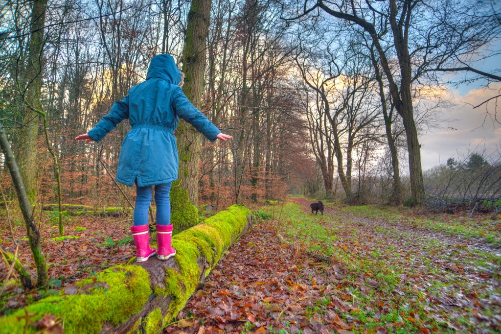 Girl in blue hooded jacket, jeans and pink gumboots, balancing on a moss-covered log. Bare trees and damp autumn leaves surround. Black dog in background. Blue sky, white clouds.